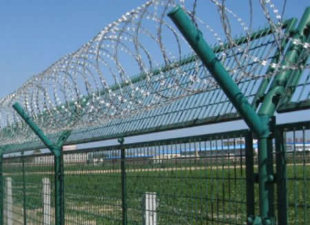 Crossed Razor Wire Coils Supported by Y Fencing Posts