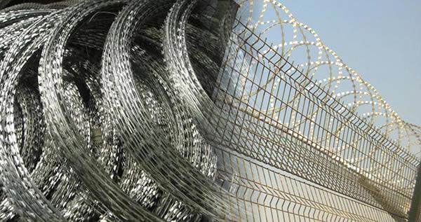 Crossed Razor Wire Coils