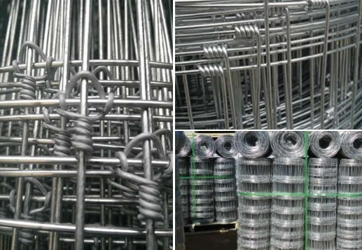 Galvanised Wire Mesh Field Fence