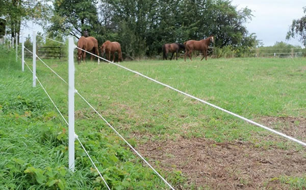 electric wire fencing field fence horse fencing cattle fencing rh 358mesh org Elec Fence Wire Electric Fence Grounding Problem